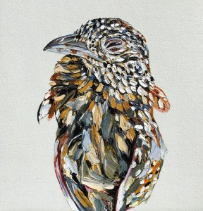 emma-lindsay-2016-cat-kill-painted-button-quail-turnix-varius-hill-end