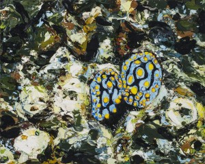 Emma Lindsay 2017 'Nudibranchs (Lizard Island)',  oil on board (Private Collection). Photo: Carl Warner.